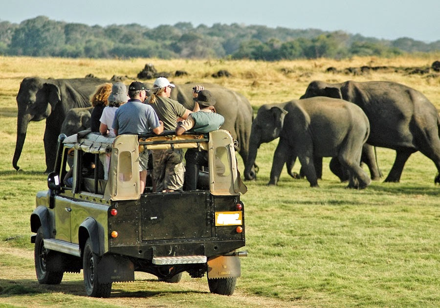 14 Days to Sri Lanka Safari